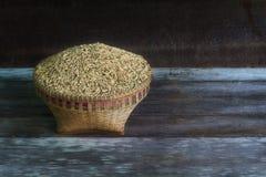 在木头的米种子 库存图片