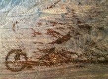在木头的踪影水 免版税库存图片