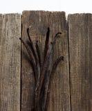 在木头的香草棍子 库存图片