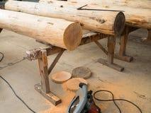 在木支架的树干 免版税库存照片