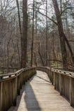 在木木板走道的人行道通过森林 免版税图库摄影