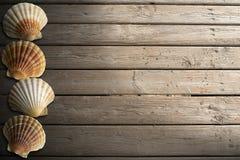 在木木板走道的贝壳有沙子的 皇族释放例证