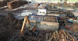 在木材加工工厂的装载的日志 股票录像