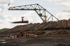 在木材磨房的日志移动的起重机 免版税库存照片