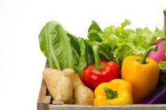 在木条板箱的新鲜蔬菜超级市场的 免版税库存图片