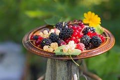 在木板材的莓果 免版税库存照片