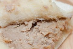 在木板材的金枪鱼三明治 免版税库存图片