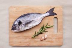 在木板条的新鲜的dorado鱼海鲜 图库摄影