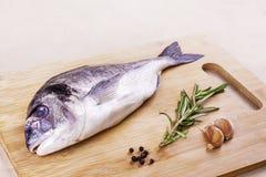 在木板条的新鲜的dorado鱼海鲜 库存照片