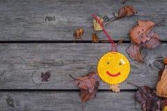 在木板条的秋天面带笑容 免版税库存照片