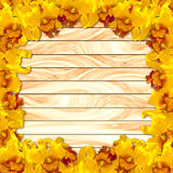 在木板条背景的框架黄色兰花 免版税库存照片