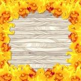 在木板条背景的框架黄色兰花 免版税库存图片