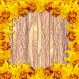 在木板条背景的黄色兰花 免版税图库摄影