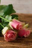 在木板的三朵美丽的桃红色玫瑰 图库摄影