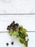 在木板的成熟黑莓 免版税库存照片