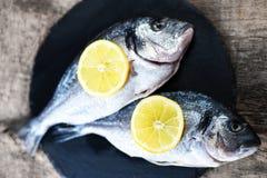 在木板的新鲜的生鱼用柠檬和盐 顶视图 免版税图库摄影