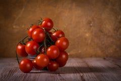 在木板的水多的新鲜的红色蕃茄在葡萄酒锡 免版税库存照片
