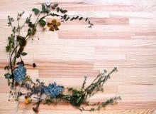 在木板的花卉框架 库存图片
