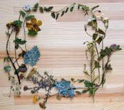 在木板的花卉框架 免版税图库摄影