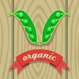 在木板的豌豆荚有红色丝带的 免版税库存照片