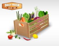 在木板箱的新鲜蔬菜在白色背景 免版税库存照片
