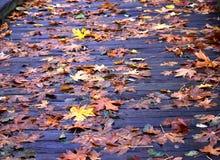 在木板走道的秋天叶子 免版税库存照片