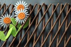 在木格子的三朵雏菊花 免版税库存图片