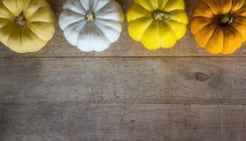 在木桌上的五颜六色的南瓜从与拷贝空间的顶视图 免版税图库摄影