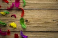 在木桌上的五颜六色的复活节羽毛 库存照片