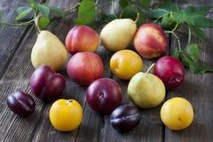 在木桌上的五颜六色的夏天果子 免版税库存照片