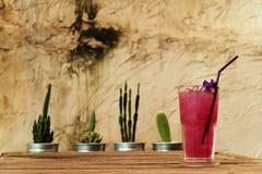 在木桌上的凉快的蝴蝶豌豆汁由在铝罐和粗砺的水泥墙壁的仙人掌装饰 库存照片