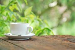 在木桌上的咖啡杯有绿色背景 免版税库存图片