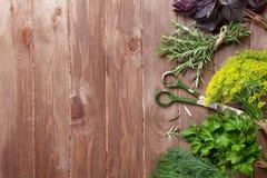 在木桌上的新鲜的庭院草本 免版税图库摄影