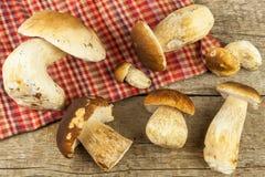 在木桌上的新鲜的牛肝菌蕈类蘑菇 收集可口食物的蘑菇 库存照片