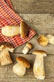 在木桌上的新鲜的牛肝菌蕈类蘑菇 收集可口食物的蘑菇 免版税库存图片