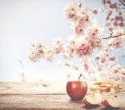 在木桌上的新鲜的苹果与在ba的蓝天和开花树 免版税图库摄影