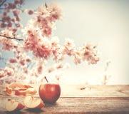 在木桌上的新鲜的苹果与在ba的蓝天和开花树 库存图片