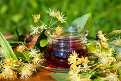 在木桌上的杯用菩提树茶和花 库存图片