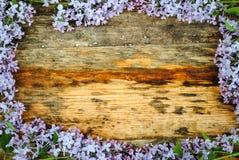 在木桌上的淡紫色花 免版税库存图片