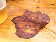 在木桌上的湿叶子 免版税图库摄影