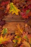 在木桌上的秋叶 免版税图库摄影