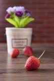在木桌上的红色草莓 库存图片