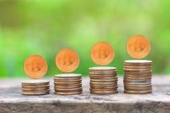 在木桌上的金钱硬币堆增长的图表与绿色自然 免版税库存图片