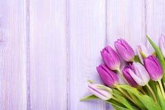 在木桌的紫色郁金香 库存图片