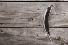 在木桌背景的黑白羽毛 免版税库存照片