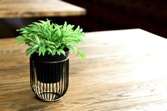 在木桌,小浅褐色的颜色上的人为木花盆在屋子里 库存图片