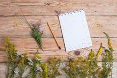 在木桌-供选择的medicin上的笔记薄和医学草本 图库摄影