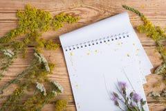在木桌-供选择的medicin上的笔记薄和医学草本 库存照片