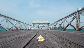 在木桥梁的一朵花 库存照片