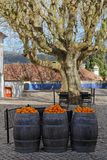 在木桶上面的桔子在Obidos,葡萄牙 库存照片